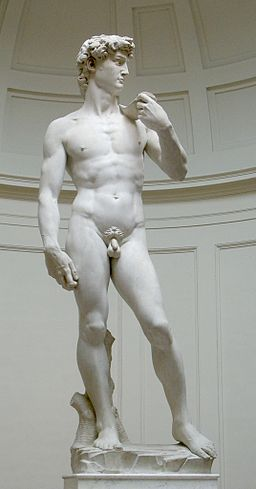 256px-David_von_Michelangelo